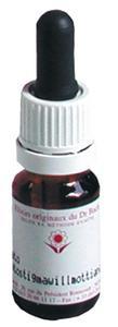ELIXIR FLORAL N  25  - RED CHESTNUT