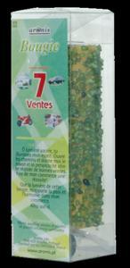 BOUGIE PLANTES GM - 7 VENTES