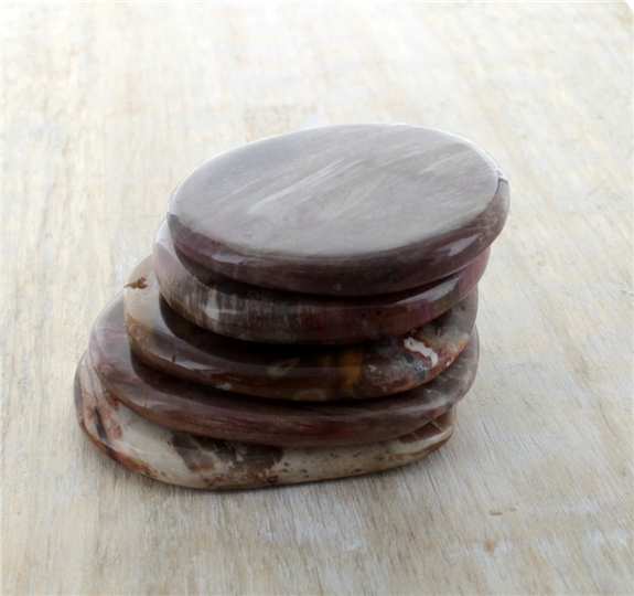 SMOOTH STONE BOIS FOSSILE/SILICIFIE - LOT DE 5