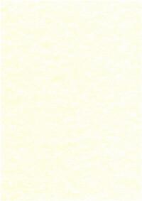 PARCHEMIN VEGETAL - 5 FEUILLES 21X29,7 CM