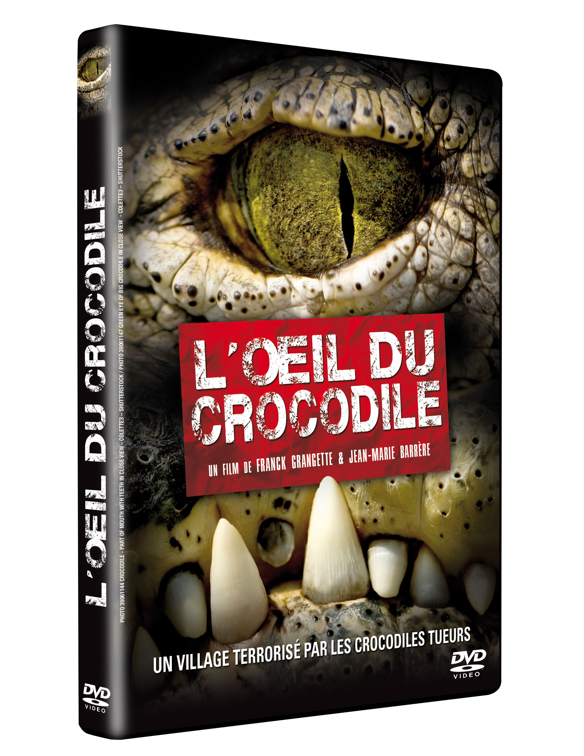 OEIL CROCODILE (L') - DVD