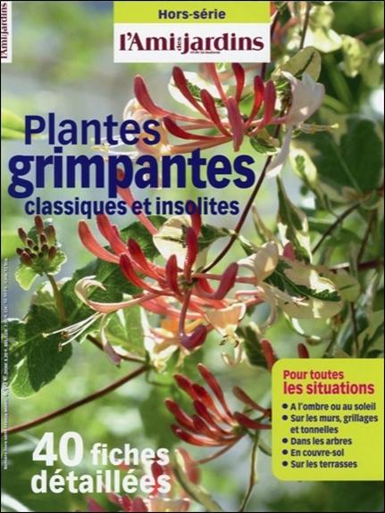 PLANTES GRIMPANTES CLASSIQUES ET INSOLITES