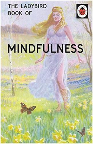 THE LADYBIRD BOOK OF MINDFULNESS /ANGLAIS