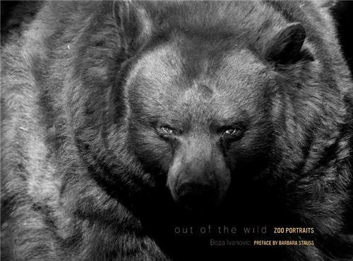 OUT OF THE WILD /ANGLAIS