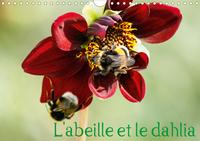 L ABEILLE ET LE DAHLIA CALENDRIER MURAL 2020 DIN A4 HORIZONTAL - LE DAHLIA ET L ABEILLE EN PARF