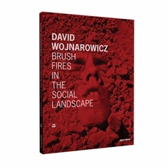 DAVID WOJNAROWICZ BRUSH FIRES IN THE SOCIAL LANDSCAPE /ANGLAIS