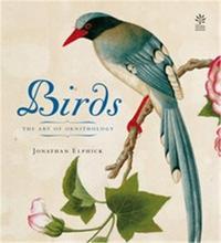 BIRDS /ANGLAIS