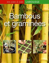 BAMBOUS ET GRAMINEES
