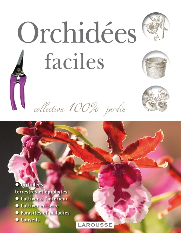 ORCHIDEES FACILES