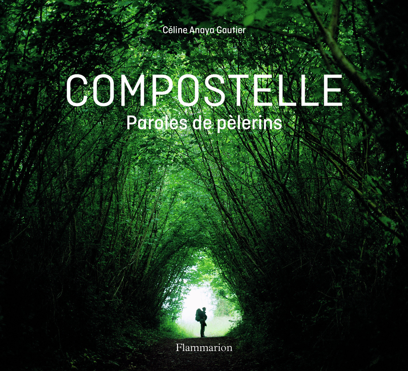 PHOTOGRAPHIE - COMPOSTELLE - PAROLES DE PELERINS