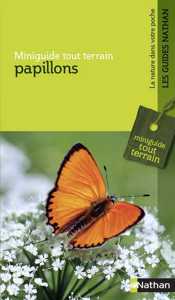 PAPILLONS - MINIGUIDE TOUT TERRAIN