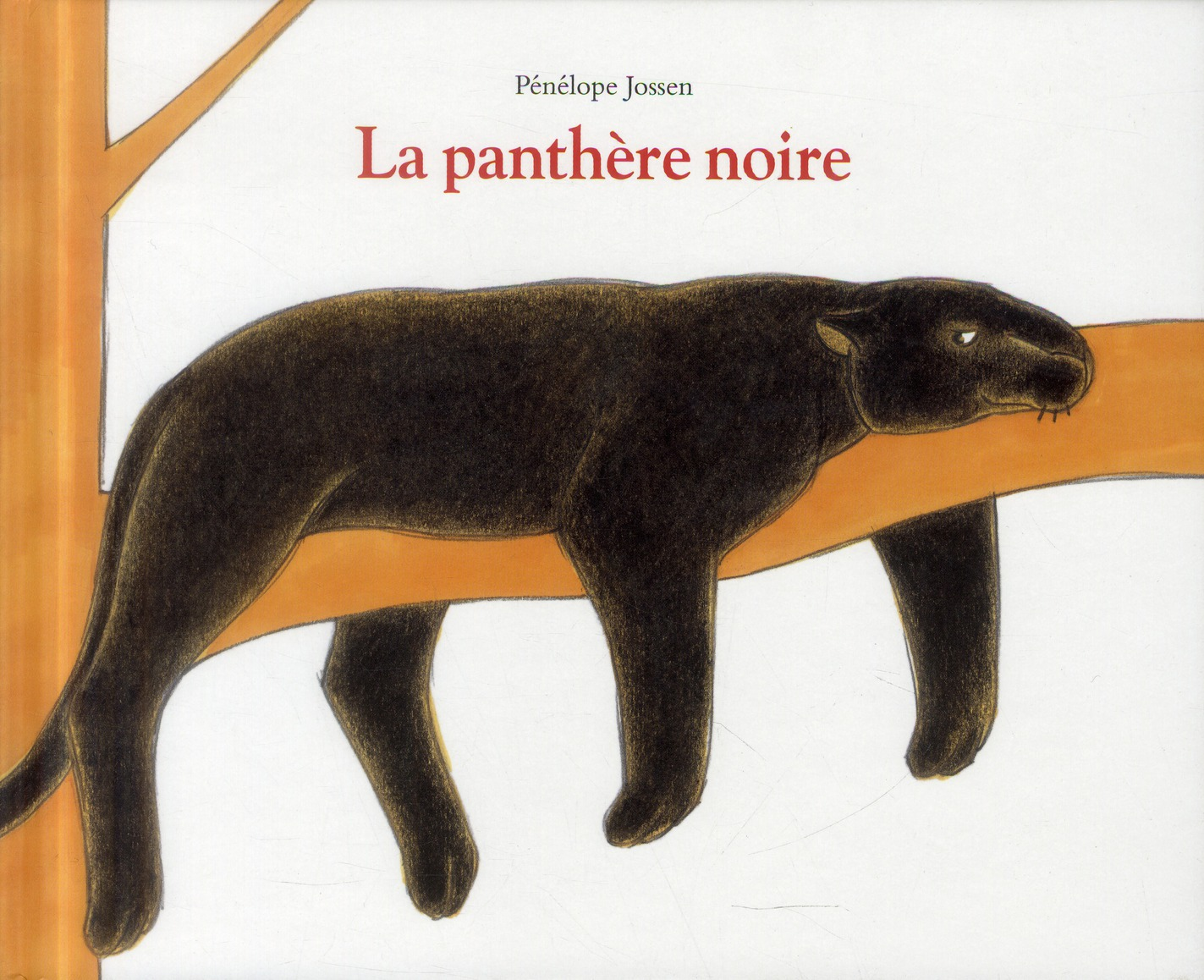 PANTHERE NOIRE (LA)
