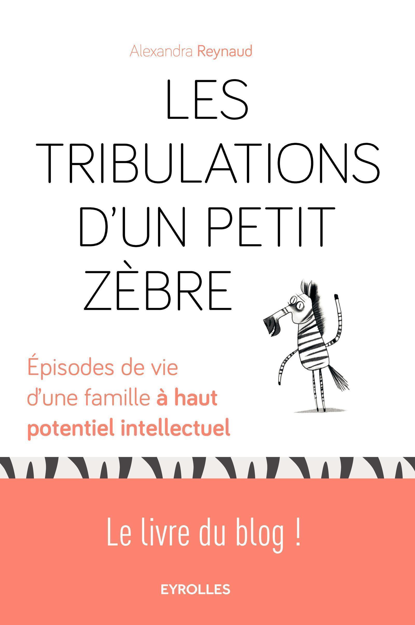 LES TRIBULATIONS D UN PETIT ZEBRE