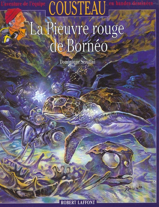 PIEUVRE ROUGE DE BORNEO