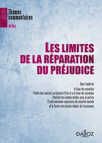 """LES LIMITES DE LA REPARATION. SEMINAIRE """"RISQUES, ASSURANCES, RESPONSABILITES"""""""