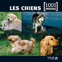 LES CHIENS EN 1001 PHOTOS - NED -