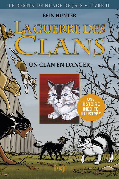 2. LA GUERRE DES CLANS VERSION ILLUSTREE CYCLE II : UN CLAN EN DANGER
