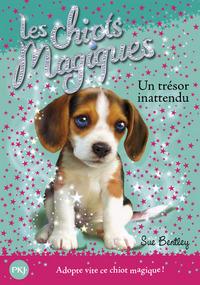 14. LES CHIOTS MAGIQUES : UN TRESOR INATTENDU