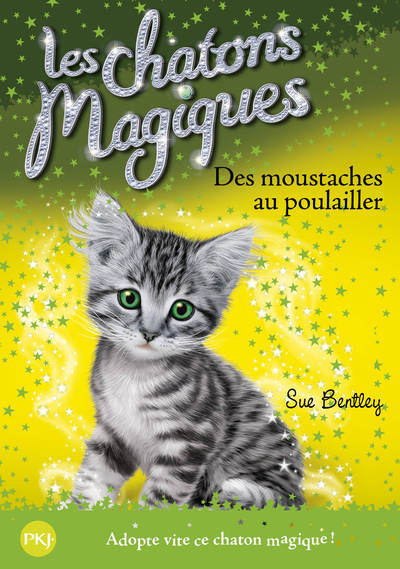 J2735 CHATONS MAGIQUES N17