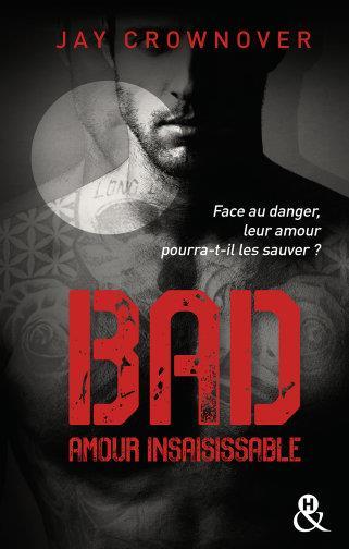 BAD - T5 AMOUR INSAISISSABLE - LE TOME 5 DE LA SERIE NEW ADULT A SUCCES DE JAY CROWNOVER - DES BAD B