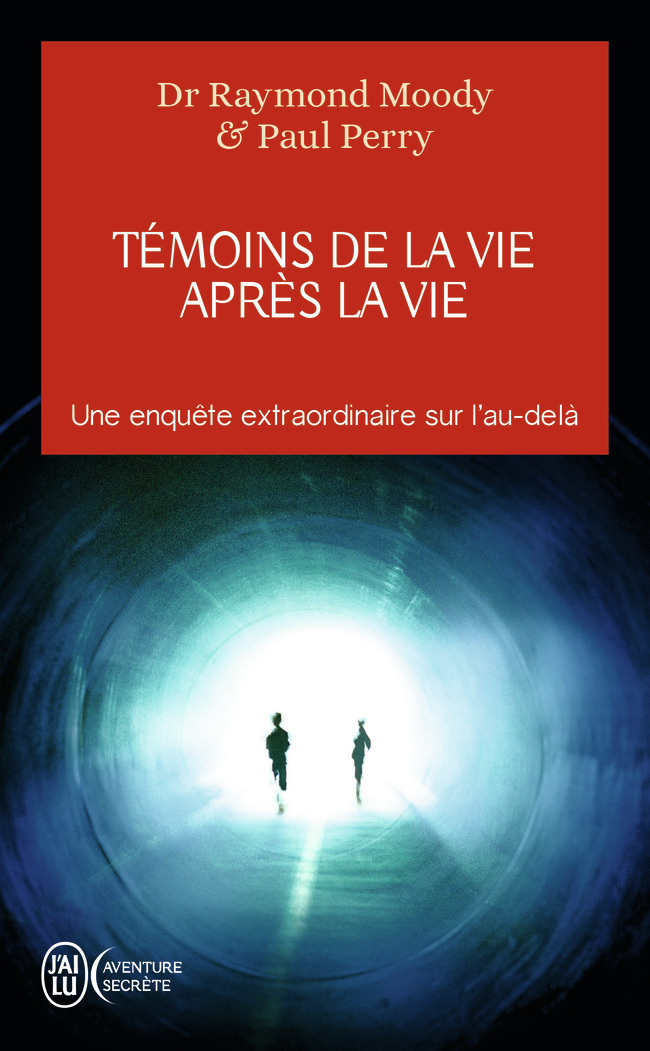 TEMOINS DE LA VIE APRES LA VIE - UNE ENQUETE SUR LES EXPERIENCES DE MORT PARTAGEE