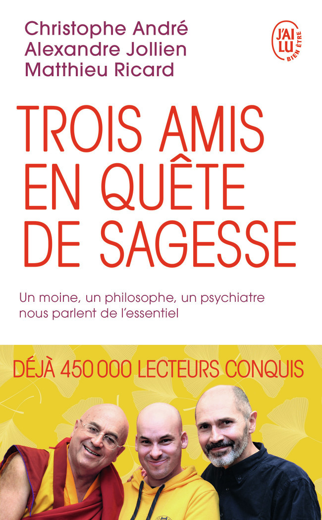 TROIS AMIS EN QUETE DE SAGESSE - UN MOINE, UN PHILOSOPHE, UN PSYCHIATRE NOUS PARLENT DE L'ESSENTIEL
