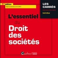 L'ESSENTIEL DU DROIT DES SOCIETES COMMERCIALES - 2019