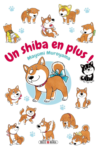 UN SHIBA EN PLUS