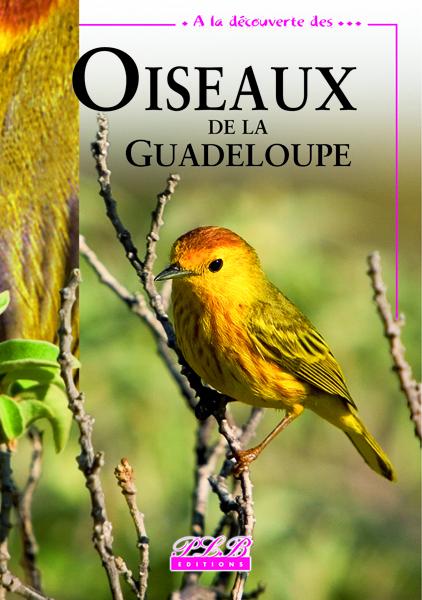 OISEAUX DE LA GUADELOUPE