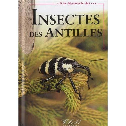 A LA DECOUVERTE DES INSECTES DES ANTILLES
