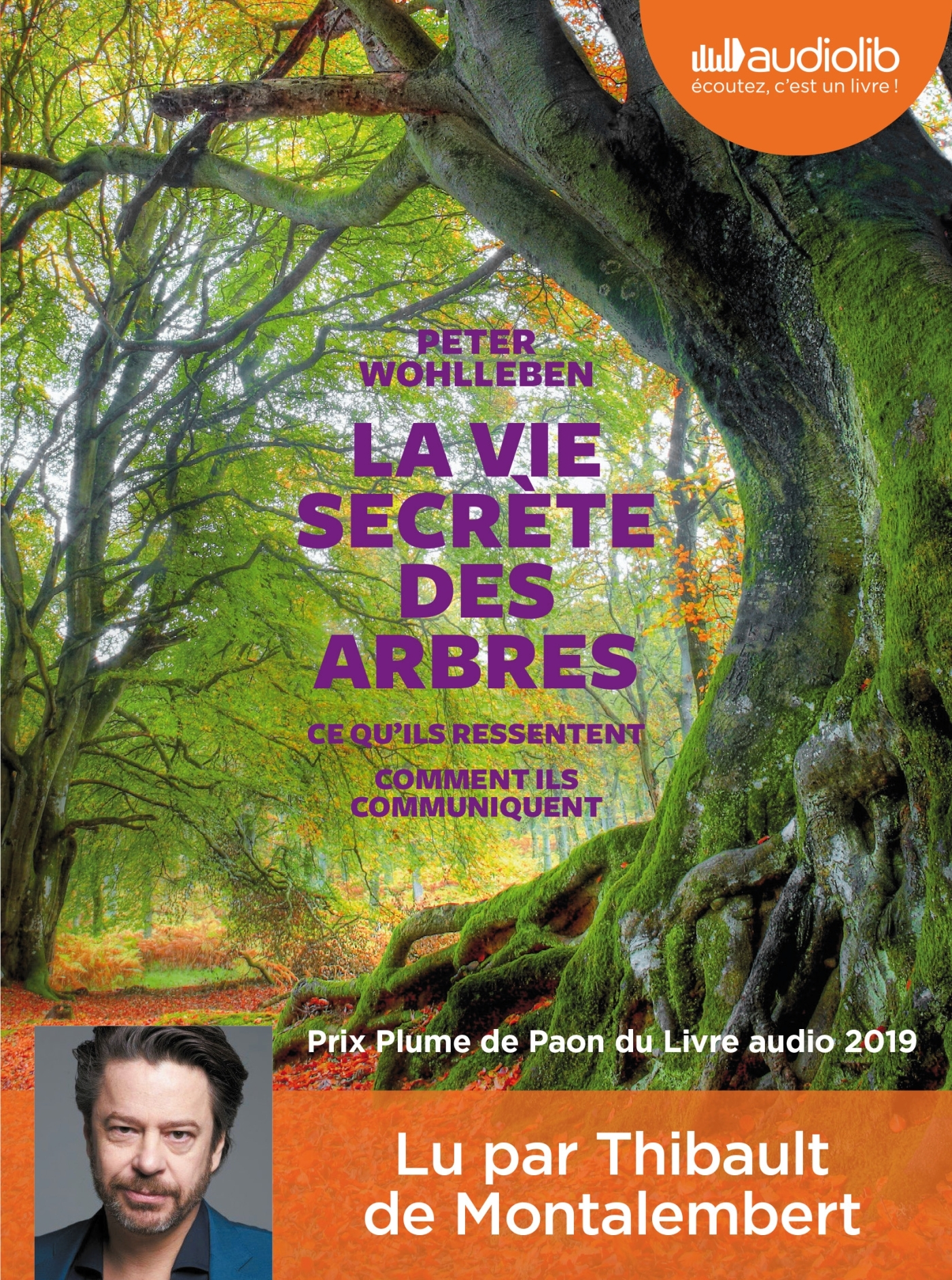 LA VIE SECRETE DES ARBRES - LIVRE AUDIO 1CD MP3
