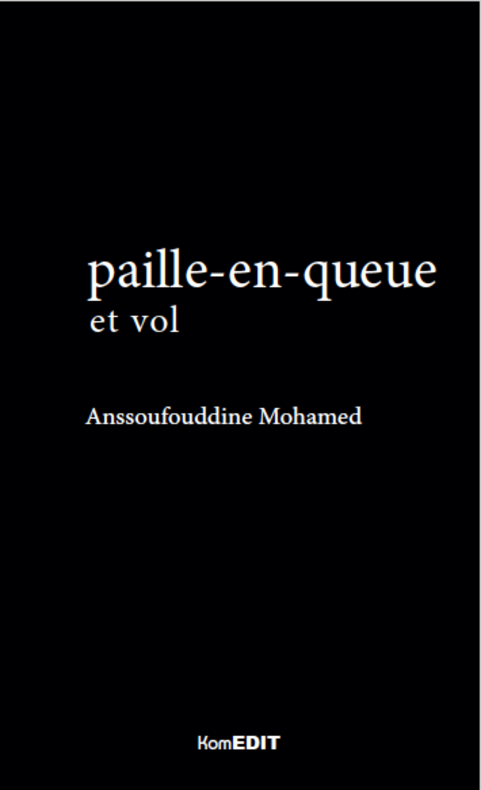PAILLE EN QUEUE ET VOL (2E ED)
