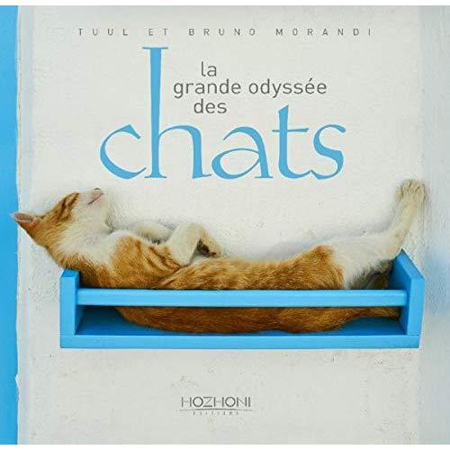 LA GRANDE ODYSSEE DES CHATS