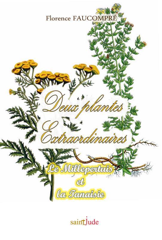 DEUX PLANTES EXTRAORDINAIRES. LE MILLEPERTUIS ET LA TANAISIE