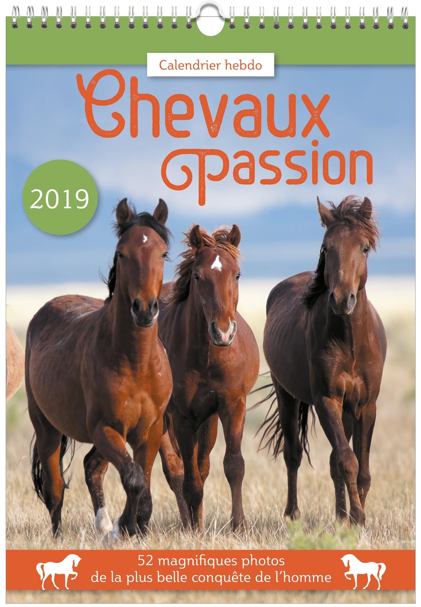 CALENDRIER HEBDO CHEVAUX PASSION 2019
