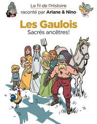 LE FIL DE L'HISTOIRE RACONTE PAR ARIANE & NINO - TOME 3 - LES GAULOIS