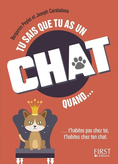 TU SAIS QUE TU AS UN CHAT QUAND...