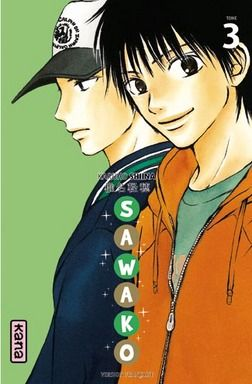 SAWAKO T3