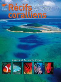 RECIFS CORALLIENS - LA FAUNE SOUS-MARINE DES CORAUX