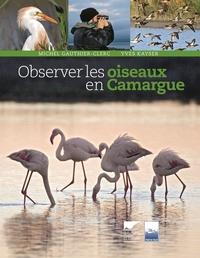 OBSERVER LES OISEAUX EN CAMARGUE