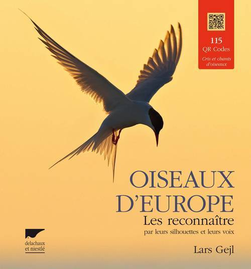 OISEAUX D'EUROPE. LES RECONNAITRE PAR LEURS SILHOUETTES ET LEURS VOIX