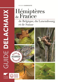 HEMIPTERES DE FRANCE. DE BELGIQUE, DU LUXEMBOURG ET DE SUISSE