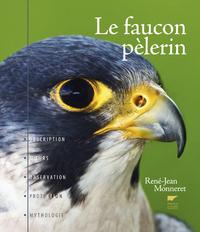 LE FAUCON PELERIN
