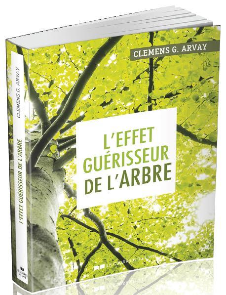 EFFET GUERISSEUR DE L'ARBRE (L')