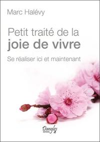 PETIT TRAITE DE LA JOIE DE VIVRE - SE REALISER ICI ET MAINTENANT