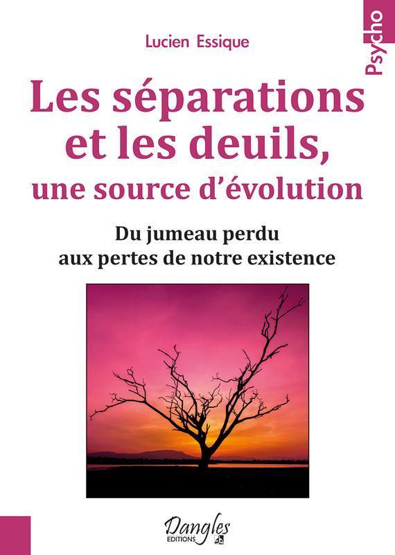 LES SEPARATIONS ET LES DEUILS, UNE SOURCE D'EVOLUTION - DU JUMEAU PERDU AUX PERTES DE NOTRE EXISTENC