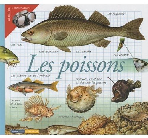 POISSONS (LES)