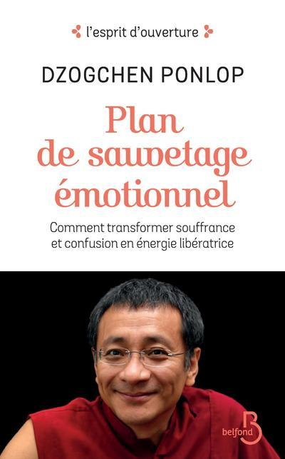 PLAN DE SAUVETAGE EMOTIONNEL