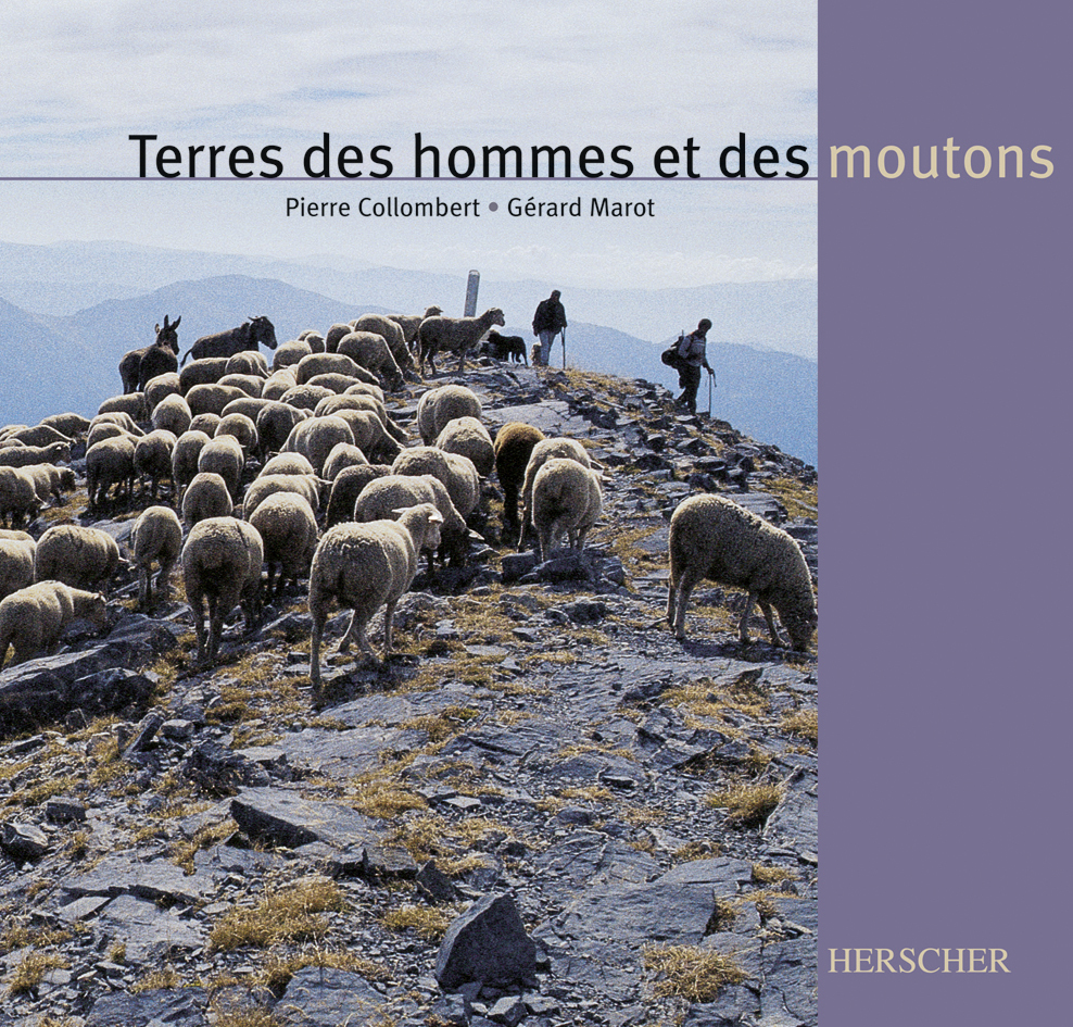 TERRE HOMMES & MOUTONS