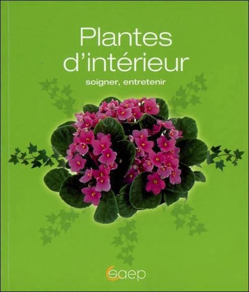 PLANTES D'INTERIEUR SOIGNER, ENTRETENIR